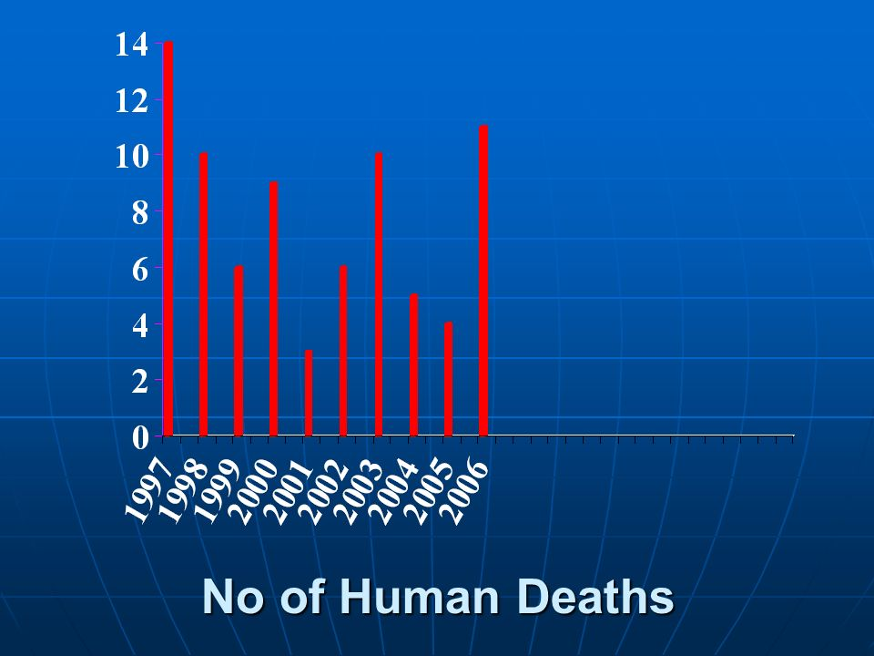 No of Human Deaths