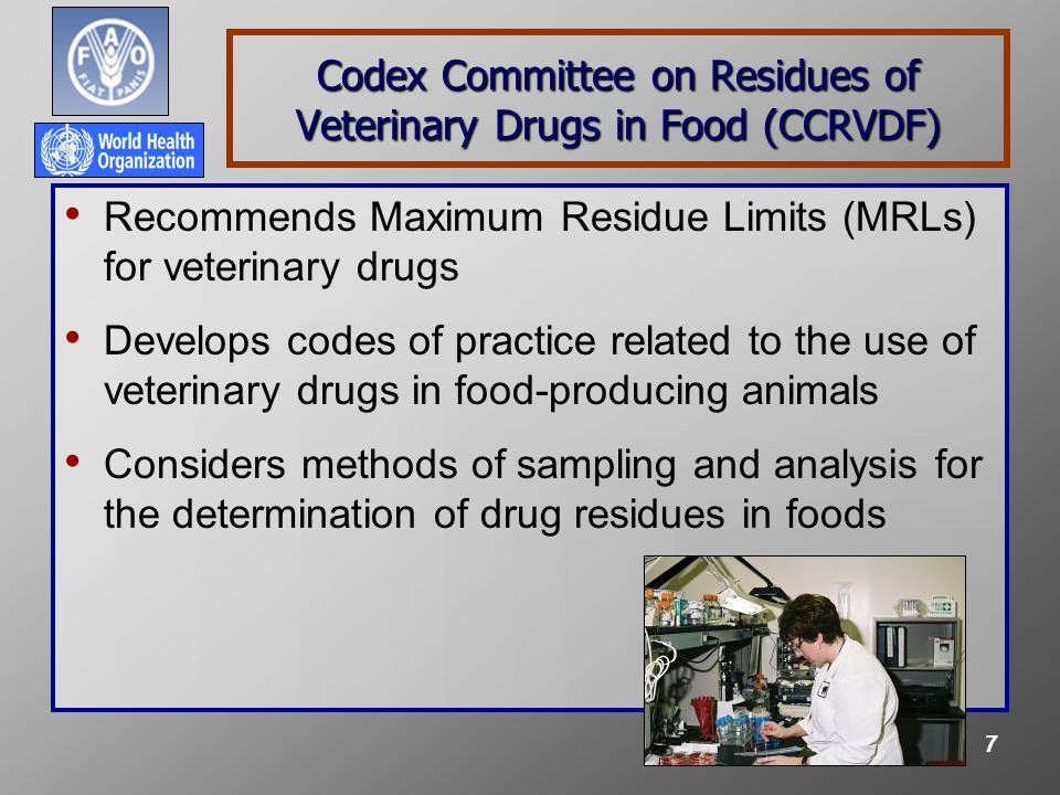 8 Codex Task Force on Antimicrobial Resistance (TFAMR) Develop guidance to assess human health risks associated with the presence in food and feed and the transmission through feed and food of antimicrobial resistant microbes and resistance genes Develop guidance to allow countries or regions to implement risk management strategies based upon identified and prioritized needs and resources