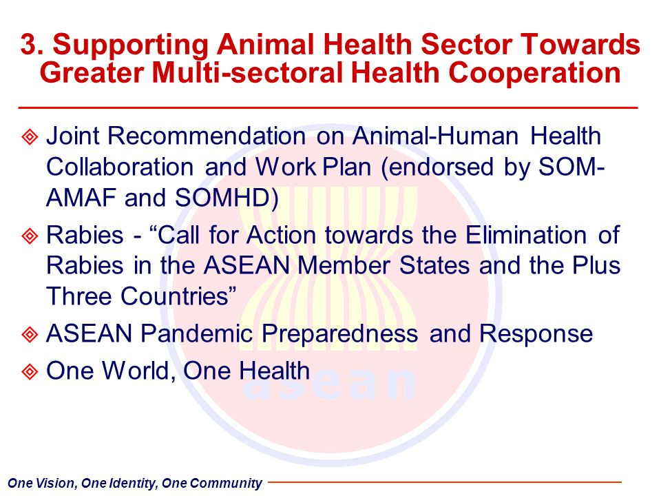 3. Supporting Animal Health Sector Towards Greater Multi-sectoral Health Cooperation Joint Recommendation on Animal-Human Health Collaboration and Wor