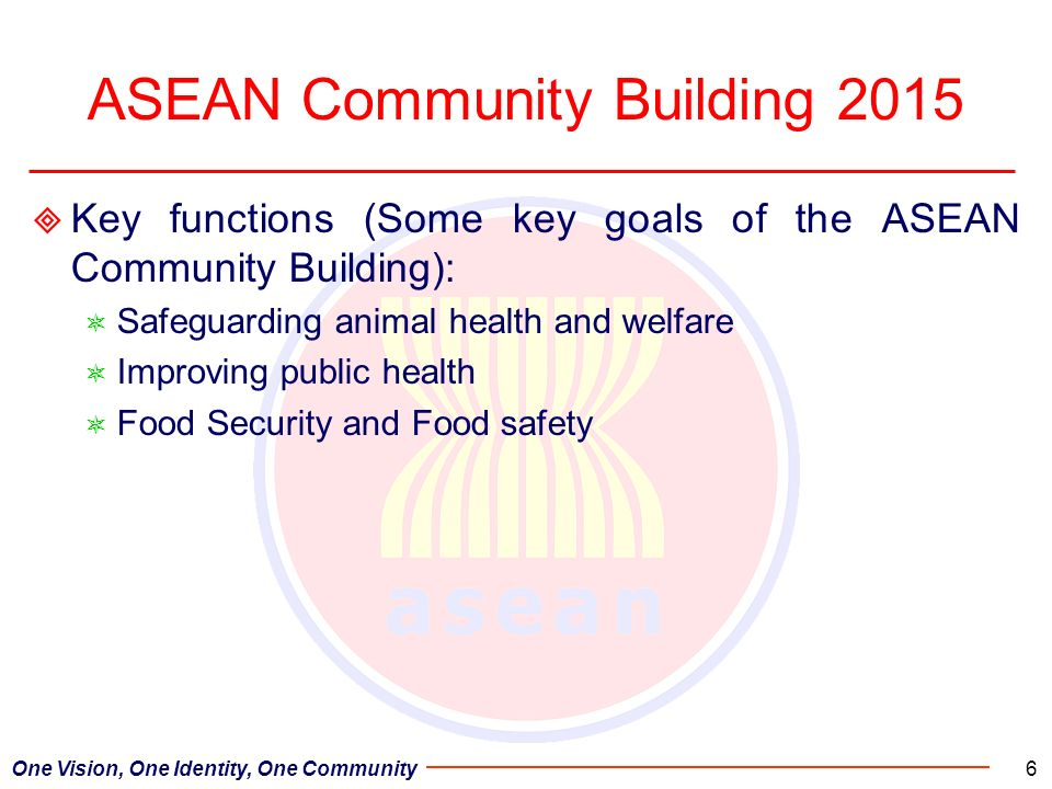 ASEAN Community Building 2015 Key functions (Some key goals of the ASEAN Community Building): Safeguarding animal health and welfare Improving public