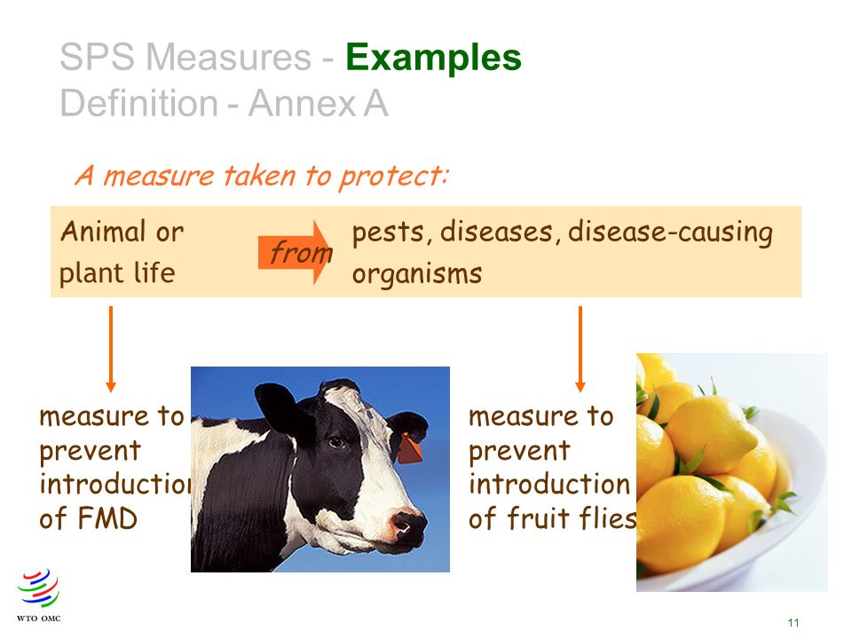 11 SPS Measures - Examples Definition - Annex A A measure taken to protect: Animal or pests, diseases, disease-causing plant life organisms from measure to prevent introduction of FMD measure to prevent introduction of fruit flies