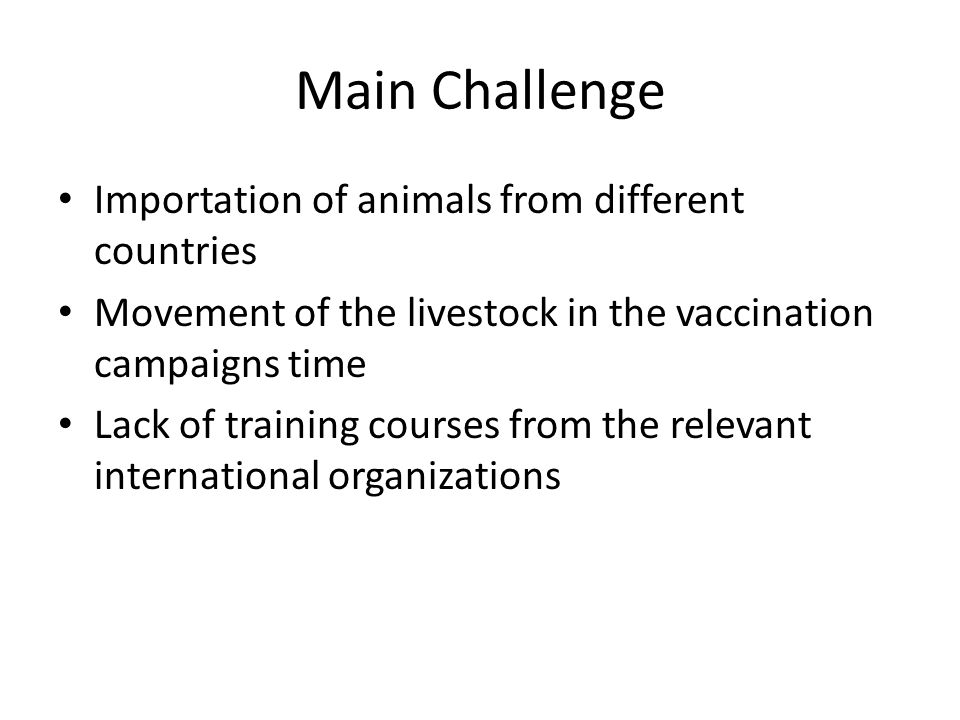 Main Challenge Importation of animals from different countries Movement of the livestock in the vaccination campaigns time Lack of training courses from the relevant international organizations