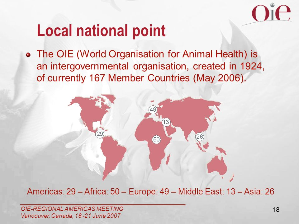 ___________________________________________________ OIE-REGIONAL AMERICAS MEETING Vancouver, Canada, 18 -21 June 2007 18 Local national point The OIE (World Organisation for Animal Health) is an intergovernmental organisation, created in 1924, of currently 167 Member Countries (May 2006).