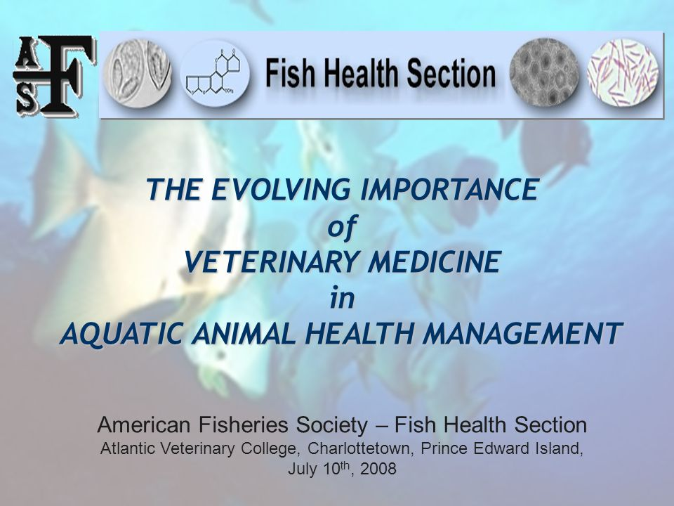 THE EVOLVING IMPORTANCE of VETERINARY MEDICINE in AQUATIC ANIMAL HEALTH MANAGEMENT American Fisheries Society – Fish Health Section Atlantic Veterinary College, Charlottetown, Prince Edward Island, July 10 th, 2008
