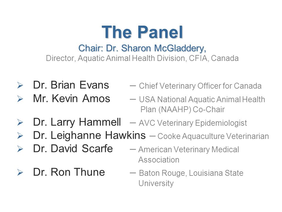 The Panel Chair: Dr. Sharon McGladdery, The Panel Chair: Dr.