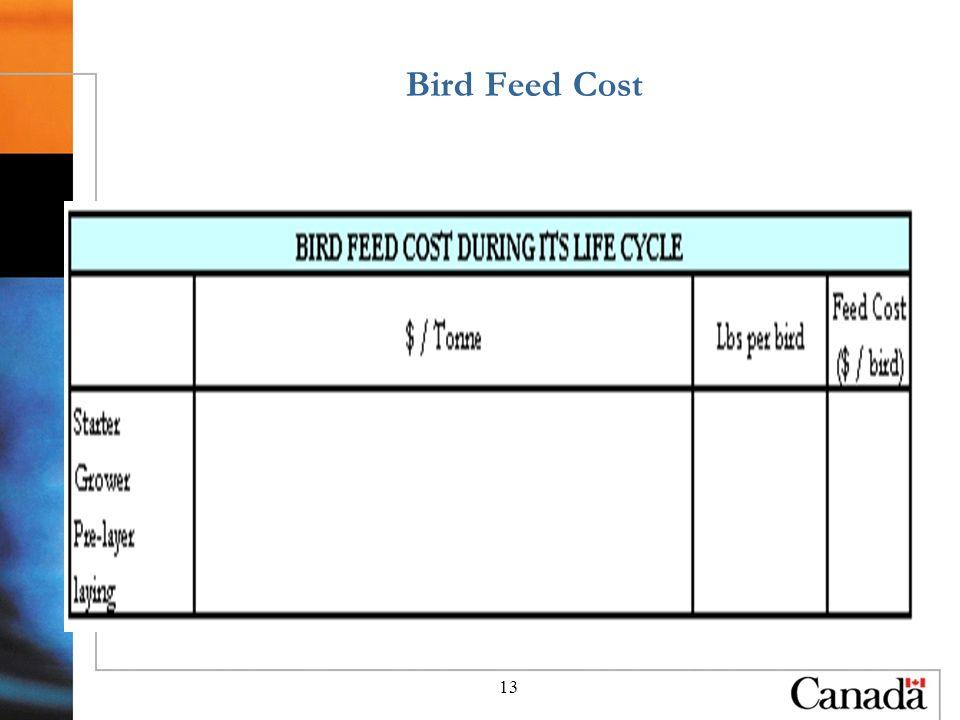 13 Bird Feed Cost