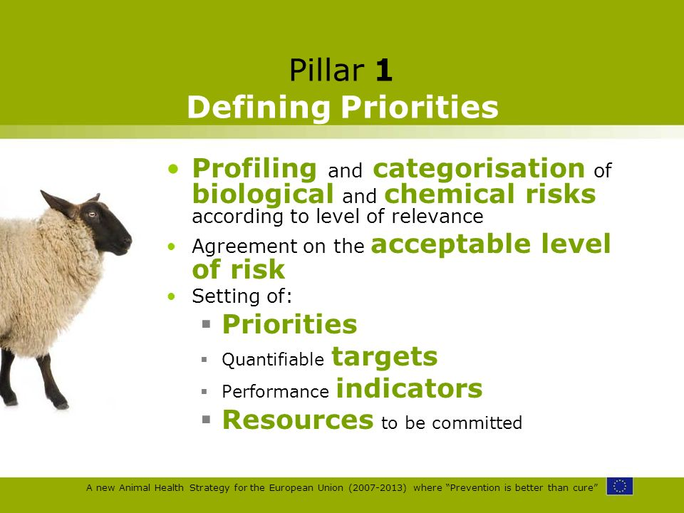 A new Animal Health Strategy for the European Union (2007-2013) where Prevention is better than cure Pillar 1 Defining Priorities Profiling and catego
