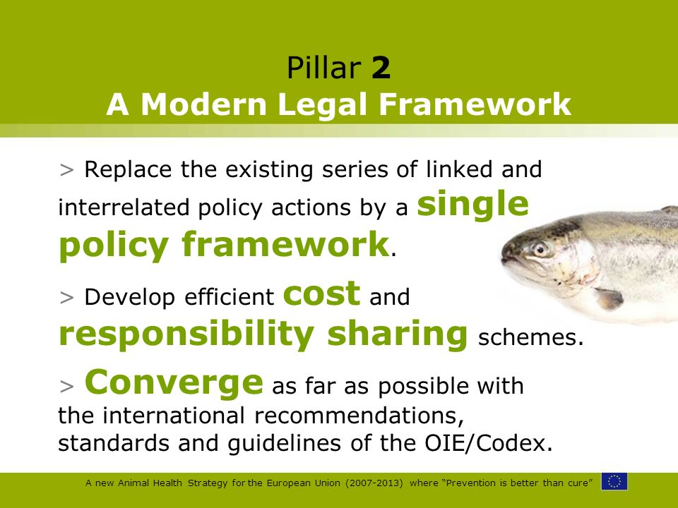 A new Animal Health Strategy for the European Union (2007-2013) where Prevention is better than cure Pillar 2 A Modern Legal Framework > Replace the e