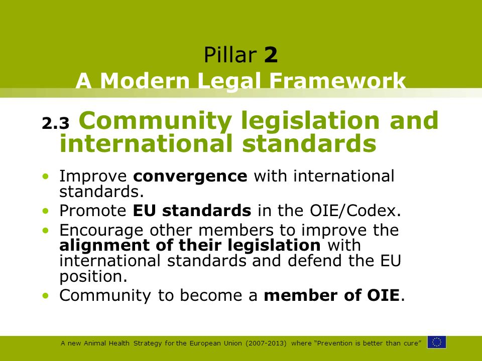 A new Animal Health Strategy for the European Union (2007-2013) where Prevention is better than cure Pillar 2 A Modern Legal Framework 2.3 Community l
