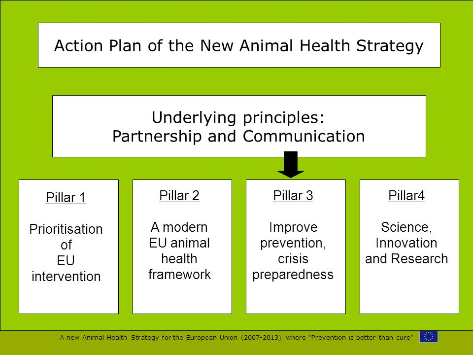 A new Animal Health Strategy for the European Union (2007-2013) where Prevention is better than cure Action Plan of the New Animal Health Strategy Und