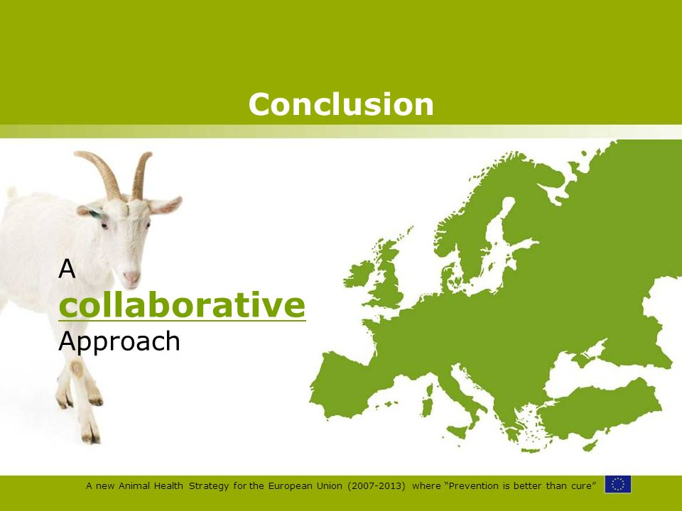 A new Animal Health Strategy for the European Union (2007-2013) where Prevention is better than cure Conclusion A collaborative Approach