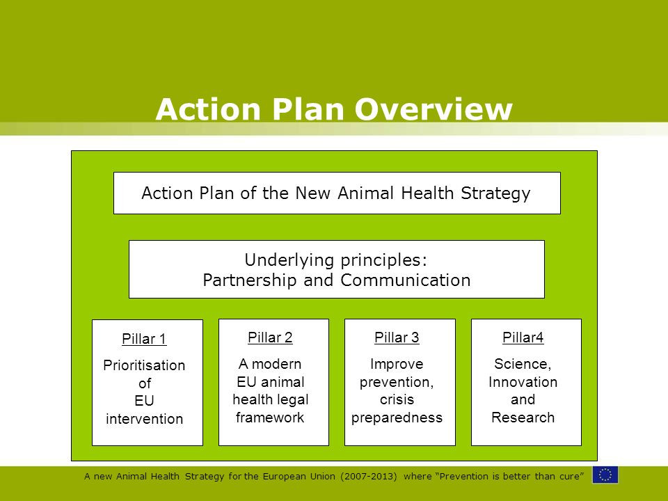 A new Animal Health Strategy for the European Union (2007-2013) where Prevention is better than cure Action Plan Overview Action Plan of the New Anima