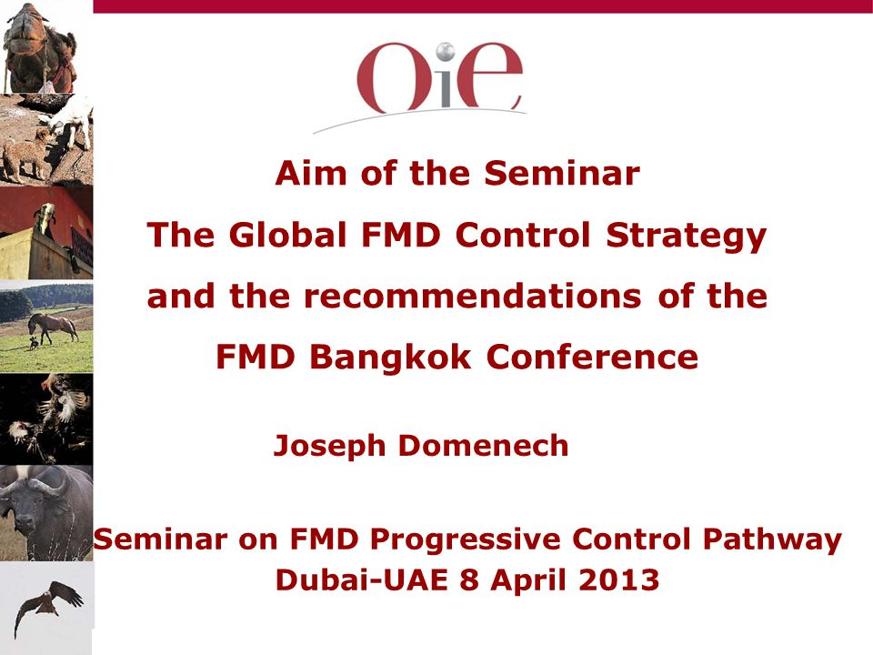 Aim of the Seminar The Global FMD Control Strategy and the recommendations of the FMD Bangkok Conference Joseph Domenech Seminar on FMD Progressive Co