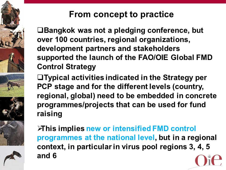 From concept to practice Bangkok was not a pledging conference, but over 100 countries, regional organizations, development partners and stakeholders