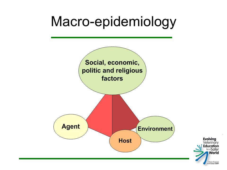 Macro-epidemiology