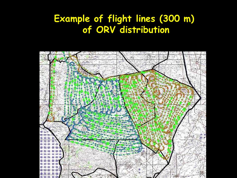 Example of flight lines (300 m) of ORV distribution