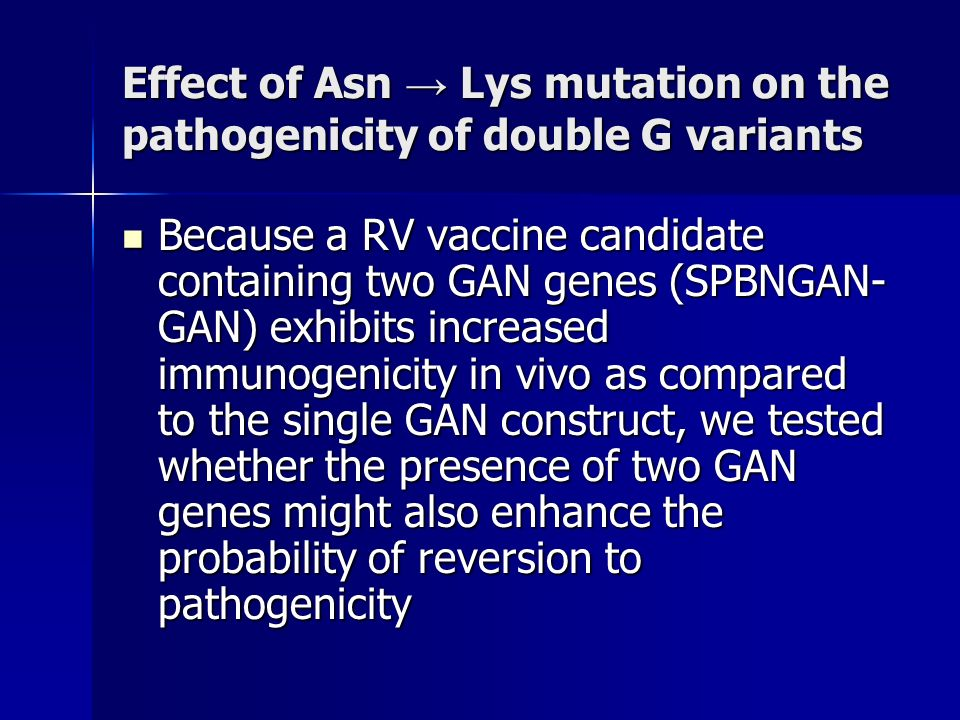 Effect of Asn Lys mutation on the pathogenicity of double G variants Because a RV vaccine candidate containing two GAN genes (SPBNGAN- GAN) exhibits increased immunogenicity in vivo as compared to the single GAN construct, we tested whether the presence of two GAN genes might also enhance the probability of reversion to pathogenicity Because a RV vaccine candidate containing two GAN genes (SPBNGAN- GAN) exhibits increased immunogenicity in vivo as compared to the single GAN construct, we tested whether the presence of two GAN genes might also enhance the probability of reversion to pathogenicity