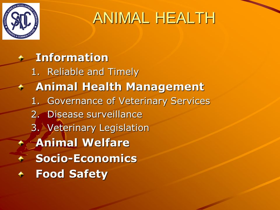 ANIMAL HEALTH Information 1.Reliable and Timely Animal Health Management 1.Governance of Veterinary Services 2.Disease surveillance 3.Veterinary Legis