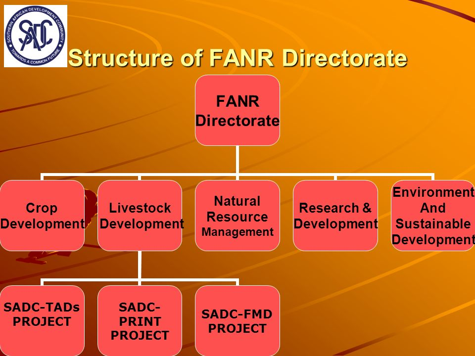 Structure of FANR Directorate FANR Directorate Crop Development Livestock Development SADC-TADs PROJECT SADC-PRINT PROJECT SADC-FMD PROJECT Natural Resource Management Research & Development Environment And Sustainable Development