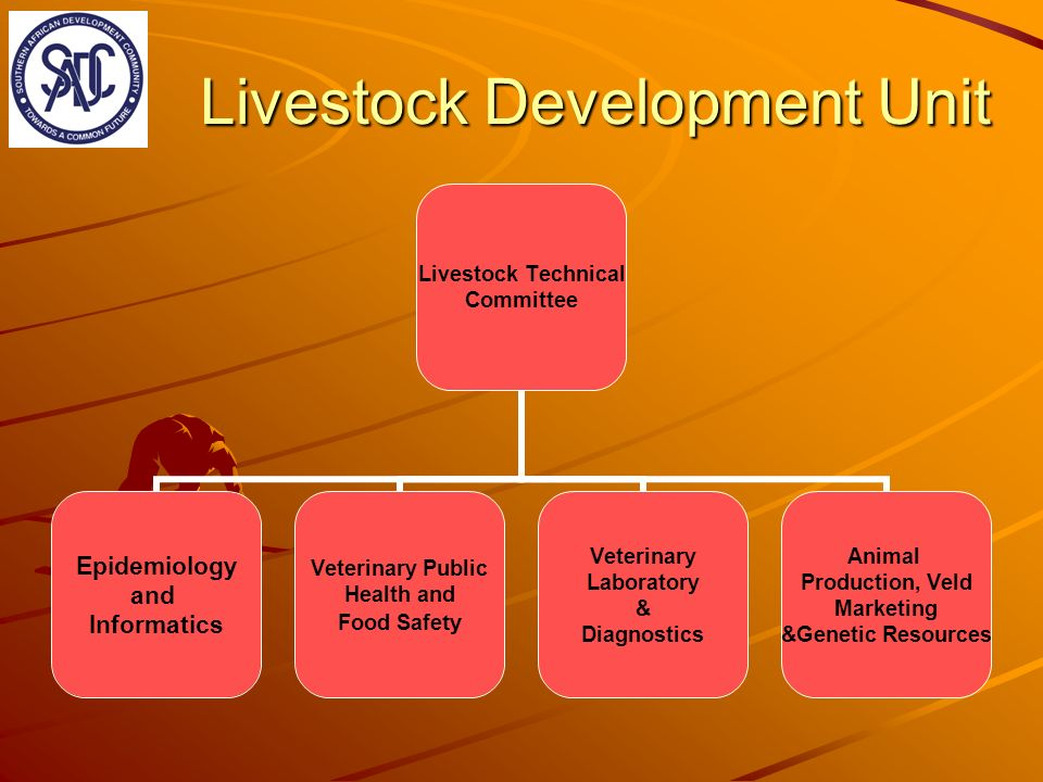 Livestock Development Unit Livestock Technical Committee Epidemiology and Informatics Veterinary Public Health and Food Safety Veterinary Laboratory & Diagnostics Animal Production, Veld Marketing &Genetic Resources