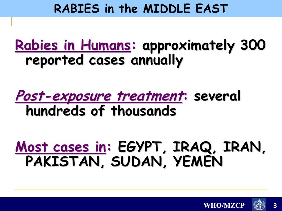WHO/MZCP Rabies in Humans: approximately 300 reported cases annually Post-exposure treatment: several hundreds of thousands Most cases in: EGYPT, IRAQ, IRAN, PAKISTAN, SUDAN, YEMEN 3 RABIES in the MIDDLE EAST