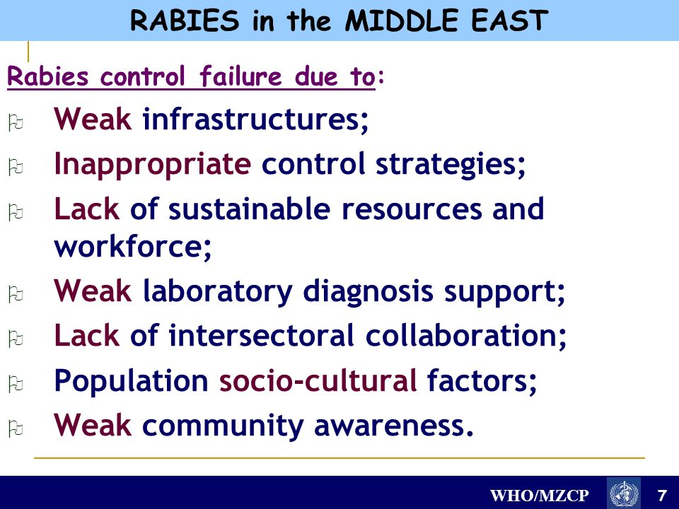 WHO/MZCP Rabies control failure due to: Weak infrastructures; Inappropriate control strategies; Lack of sustainable resources and workforce; Weak laboratory diagnosis support; Lack of intersectoral collaboration; Population socio-cultural factors; Weak community awareness.