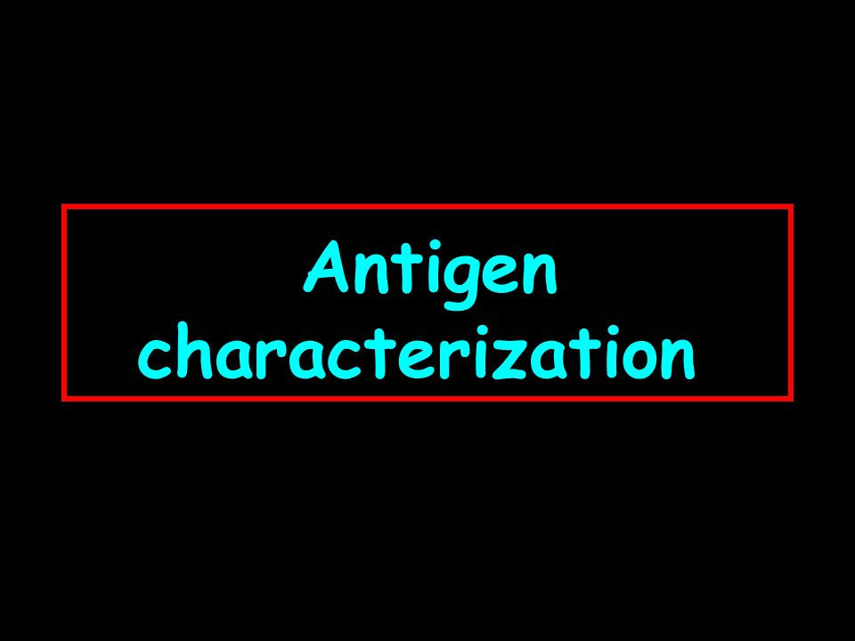 Antigen characterization