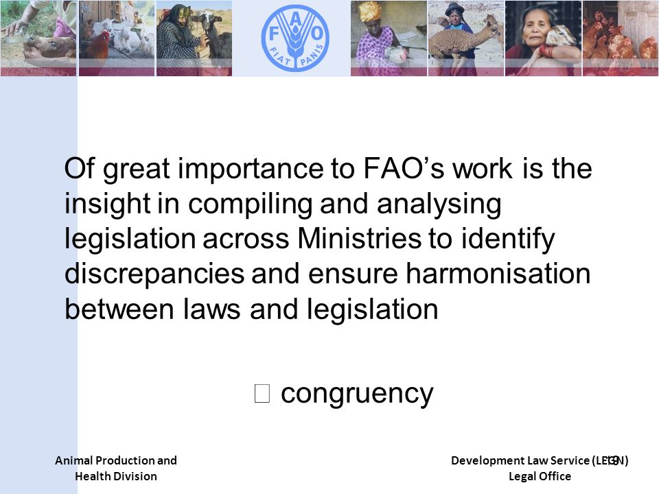 Animal Production and Health Division Development Law Service (LEGN) Legal Office Of great importance to FAOs work is the insight in compiling and analysing legislation across Ministries to identify discrepancies and ensure harmonisation between laws and legislation congruency 19