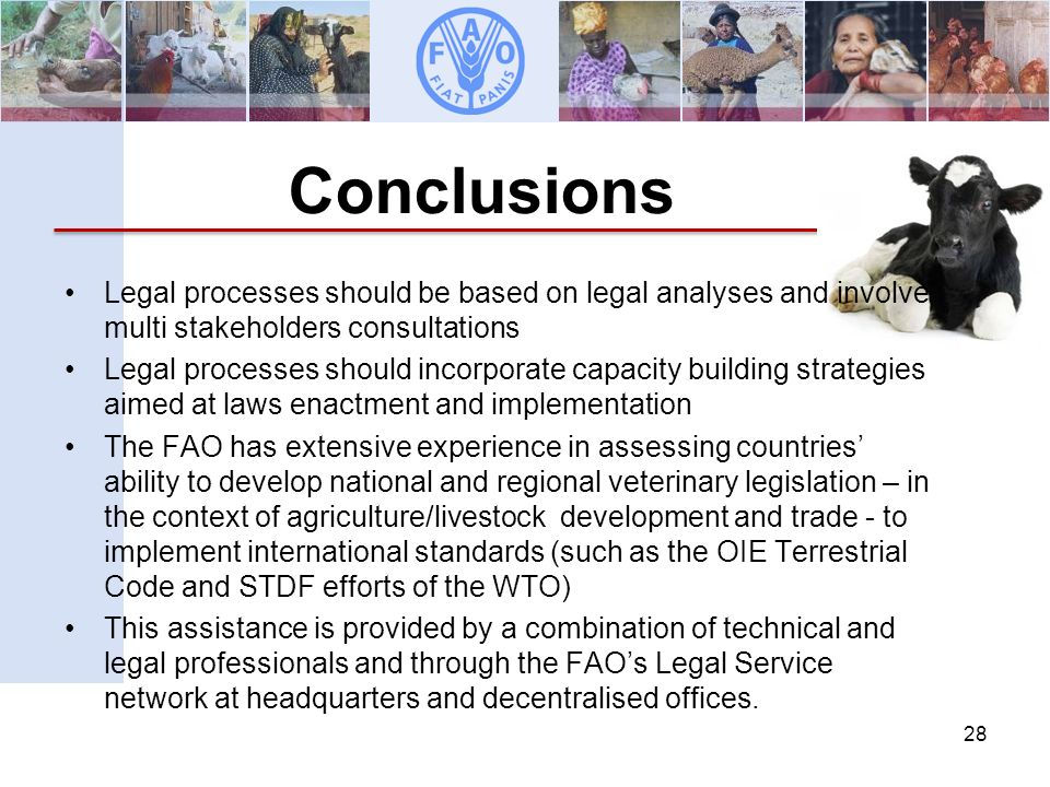 Animal Production and Health Division Development Law Service (LEGN) Legal Office Conclusions 28 Legal processes should be based on legal analyses and involve multi stakeholders consultations Legal processes should incorporate capacity building strategies aimed at laws enactment and implementation The FAO has extensive experience in assessing countries ability to develop national and regional veterinary legislation – in the context of agriculture/livestock development and trade - to implement international standards (such as the OIE Terrestrial Code and STDF efforts of the WTO) This assistance is provided by a combination of technical and legal professionals and through the FAOs Legal Service network at headquarters and decentralised offices.