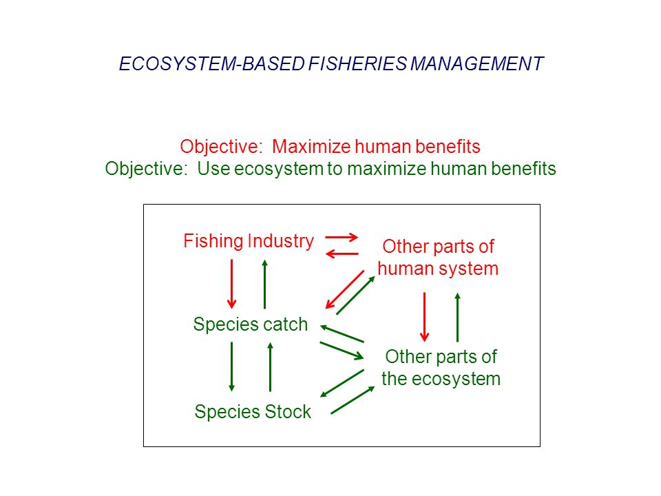 Objective: Maximize human benefits Objective: Use ecosystem to maximize human benefits Species catch Species Stock Fishing Industry Other parts of the