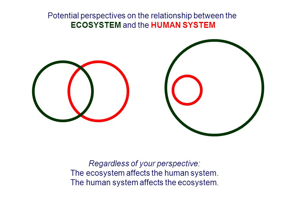 Potential perspectives on the relationship between the ECOSYSTEM and the HUMAN SYSTEM Regardless of your perspective: The ecosystem affects the human