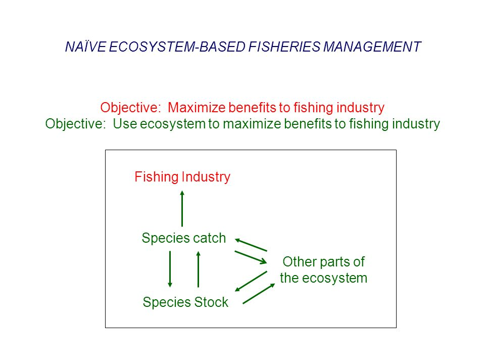 Objective: Maximize benefits to fishing industry Objective: Use ecosystem to maximize benefits to fishing industry Species catch Species Stock Fishing