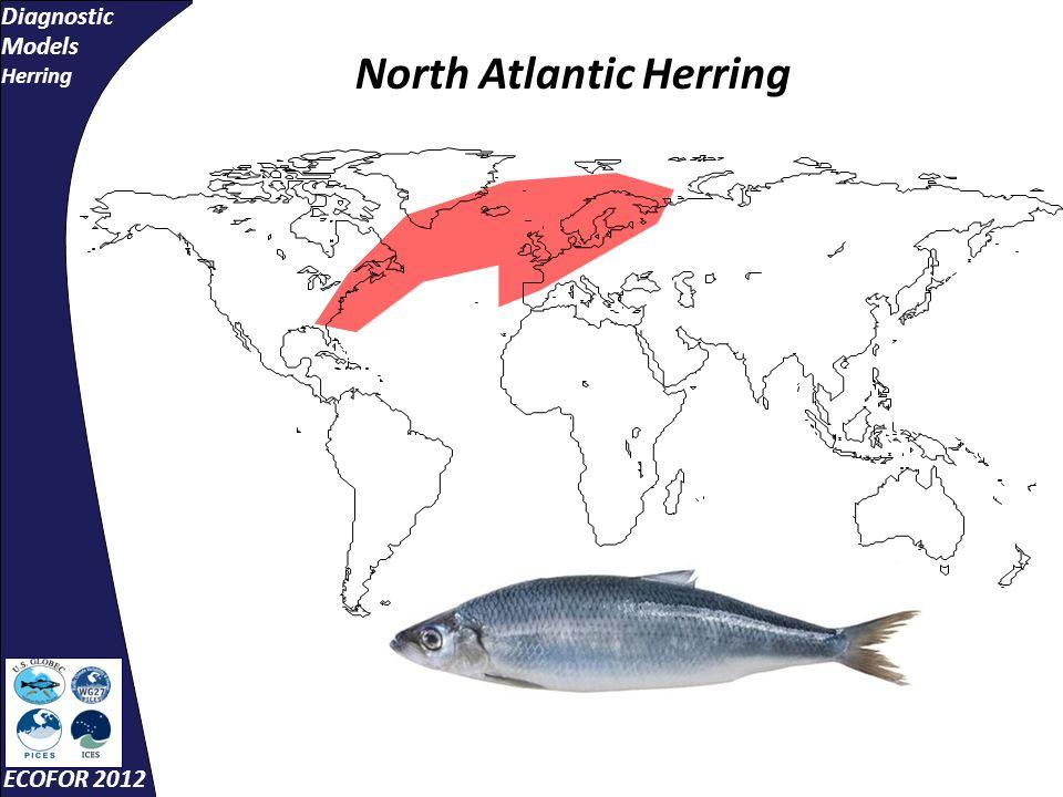 Diagnostic Models Herring ECOFOR 2012 North Atlantic Herring