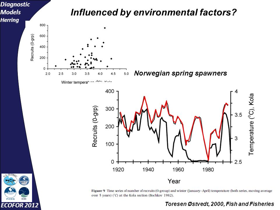 Diagnostic Models Herring ECOFOR 2012 -8-6-4-202468 0 2 4 6 8 10 R²= 0.46 eigenvector 2 overwinter survival Recruitment is related to drift and temperature conditions