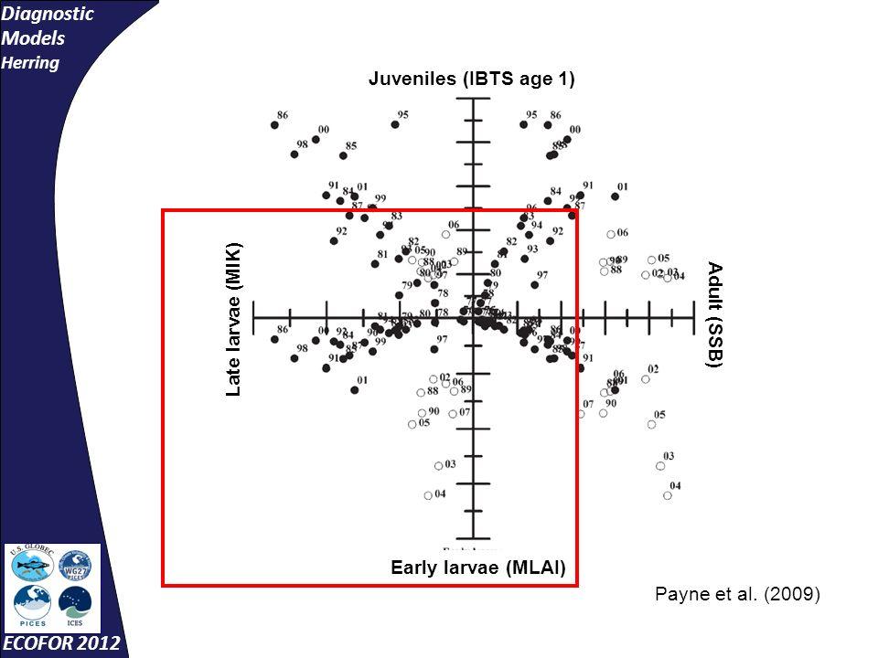 Diagnostic Models Herring ECOFOR 2012 Juveniles (IBTS age 1) Adult (SSB) Early larvae (MLAI) Late larvae (MIK) Payne et al.