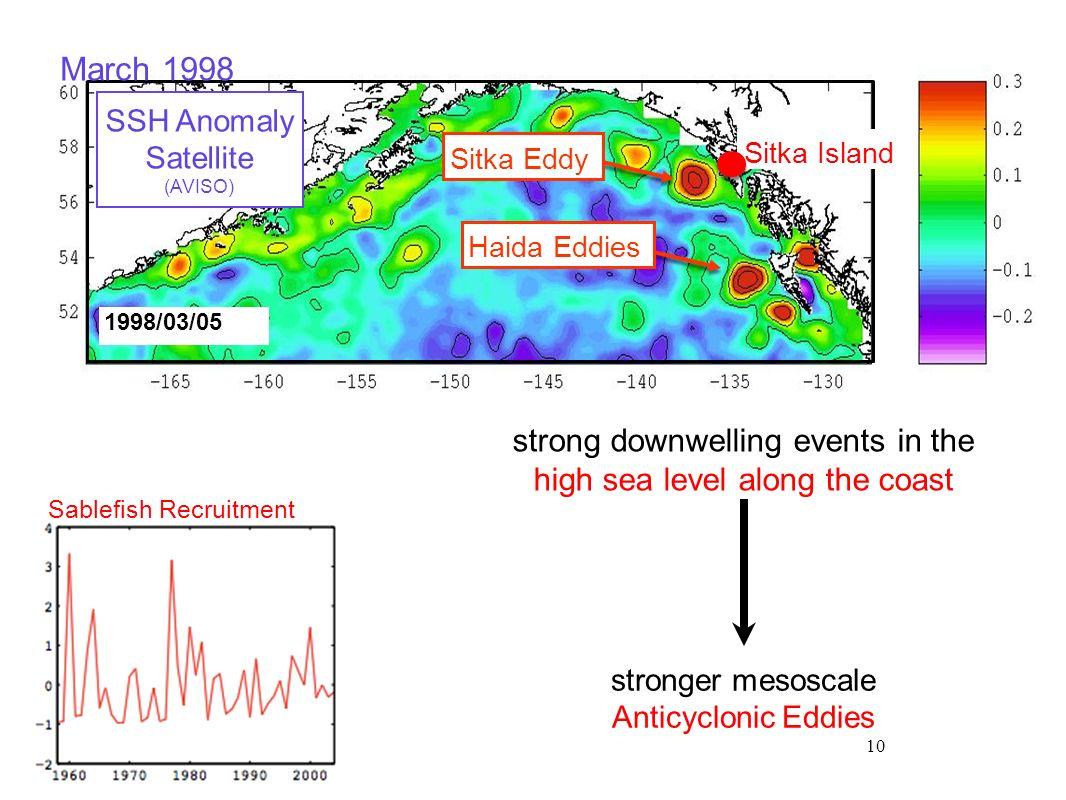 10 Sablefish Recruitment 1998/03/05 Sitka Island SSH Anomaly Satellite (AVISO) strong downwelling events in the high sea level along the coast stronge