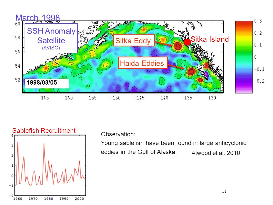 11 Sablefish Recruitment 1998/03/05 Sitka Island SSH Anomaly Satellite (AVISO) March 1998 Haida Eddies Sitka Eddy Observation: Young sablefish have be