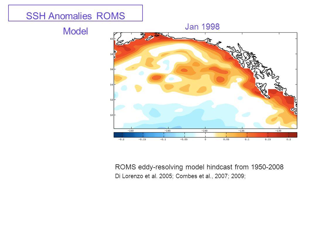 SSH Anomalies ROMS Model Jan 1998 ROMS eddy-resolving model hindcast from 1950-2008 Di Lorenzo et al. 2005; Combes et al., 2007; 2009;