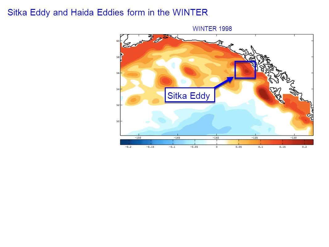 WINTER 1998 Sitka Eddy and Haida Eddies form in the WINTER Sitka Eddy