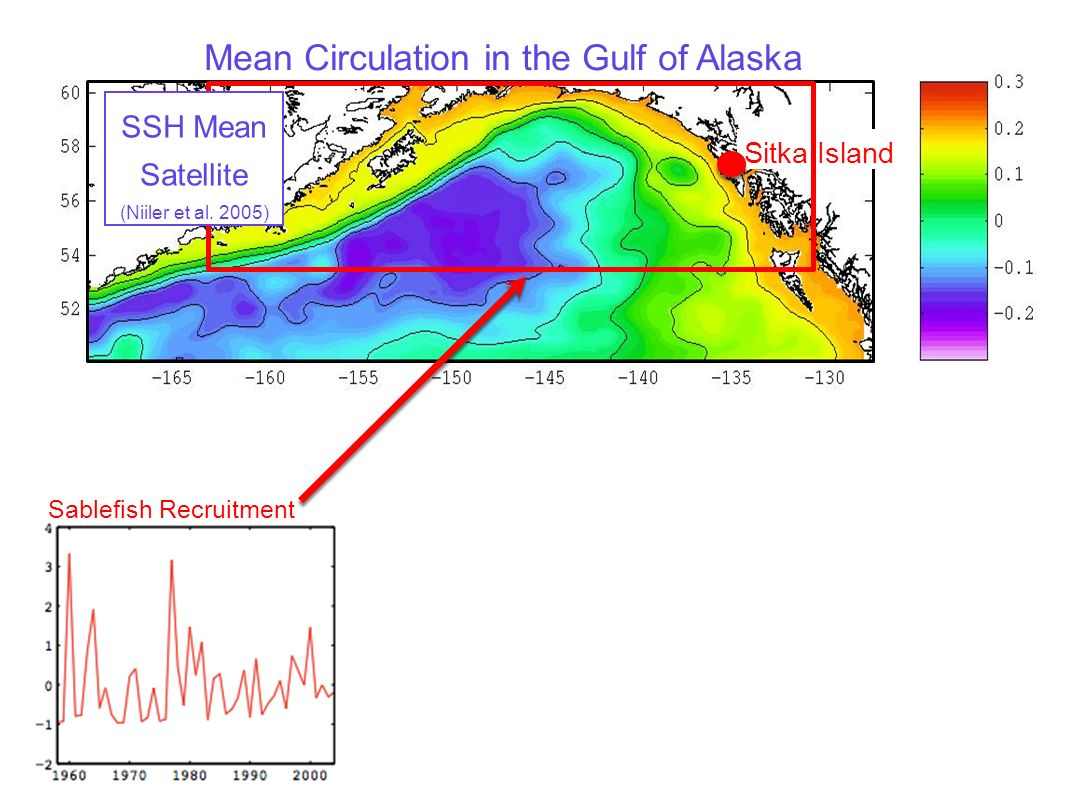 Sablefish Recruitment Testing the Hypothesis: Use a regional eddy-resolving ocean model hindcast (ROMS) to generate an index of Sitka Eddy strength to use as a diagnostic for predicting sablefish recruitment timeseries SSH Anomalies ROMS Model QUESTION: How does the model capture eddy events like the winter of 1998?