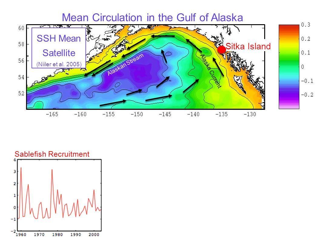 Alaskan Stream Alaska Current Sablefish Recruitment Mean Circulation in the Gulf of Alaska SSH Mean Satellite (Niiler et al. 2005) Sitka Island