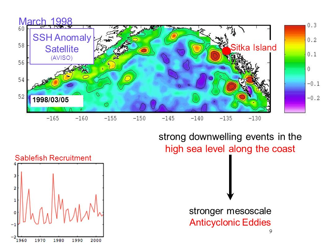 May 1998 Sitka and Haida Eddies ROMS eddy-resolving model hindcast from 1950-2008 Di Lorenzo et al.