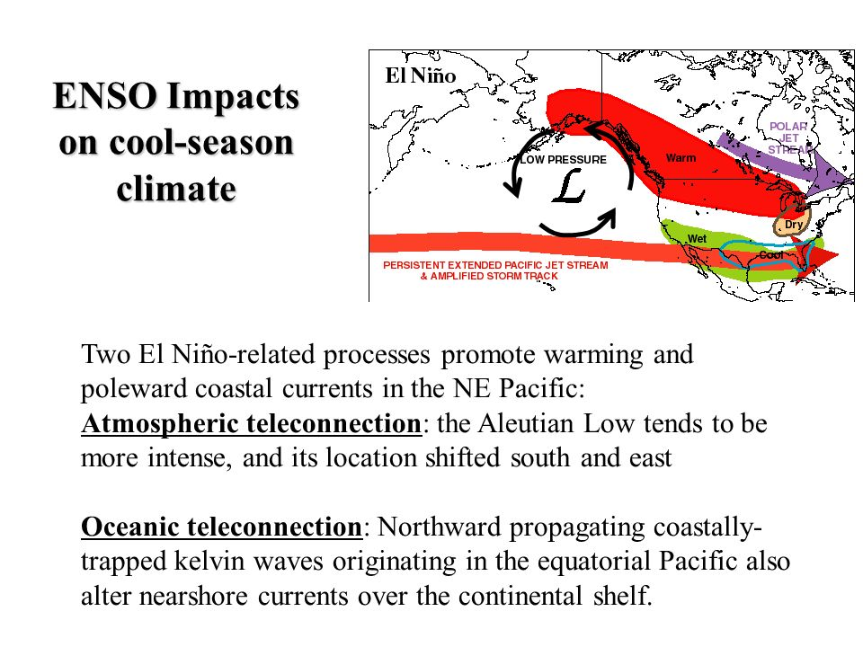 ENSO Impacts on cool-season climate Two El Niño-related processes promote warming and poleward coastal currents in the NE Pacific: Atmospheric telecon