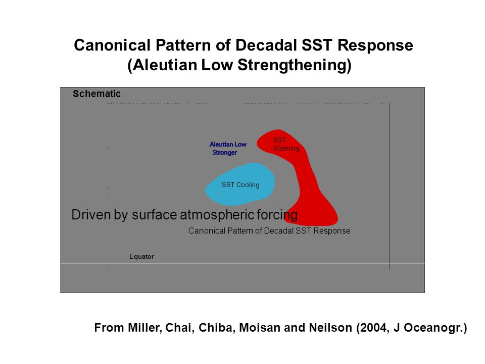 Canonical Pattern of Decadal SST Response SST Cooling SST Warming Driven by surface atmospheric forcing Canonical Pattern of Decadal SST Response (Ale