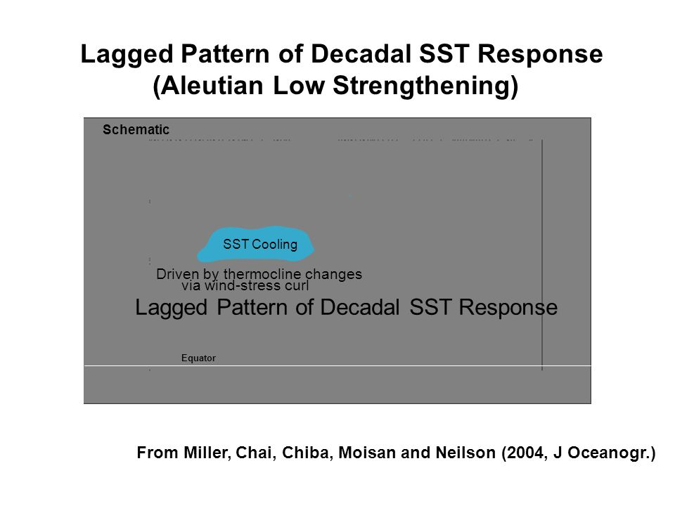sCooling SST Cooling Lagged Pattern of Decadal SST Response Driven by thermocline changes via wind-stress curl Schematic From Miller, Chai, Chiba, Moi