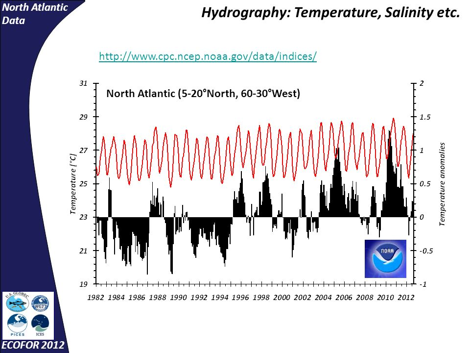 North Atlantic Data ECOFOR 2012 http://www.cpc.ncep.noaa.gov/data/indices/ Hydrography: Temperature, Salinity etc. North Atlantic (5-20°North, 60-30°W