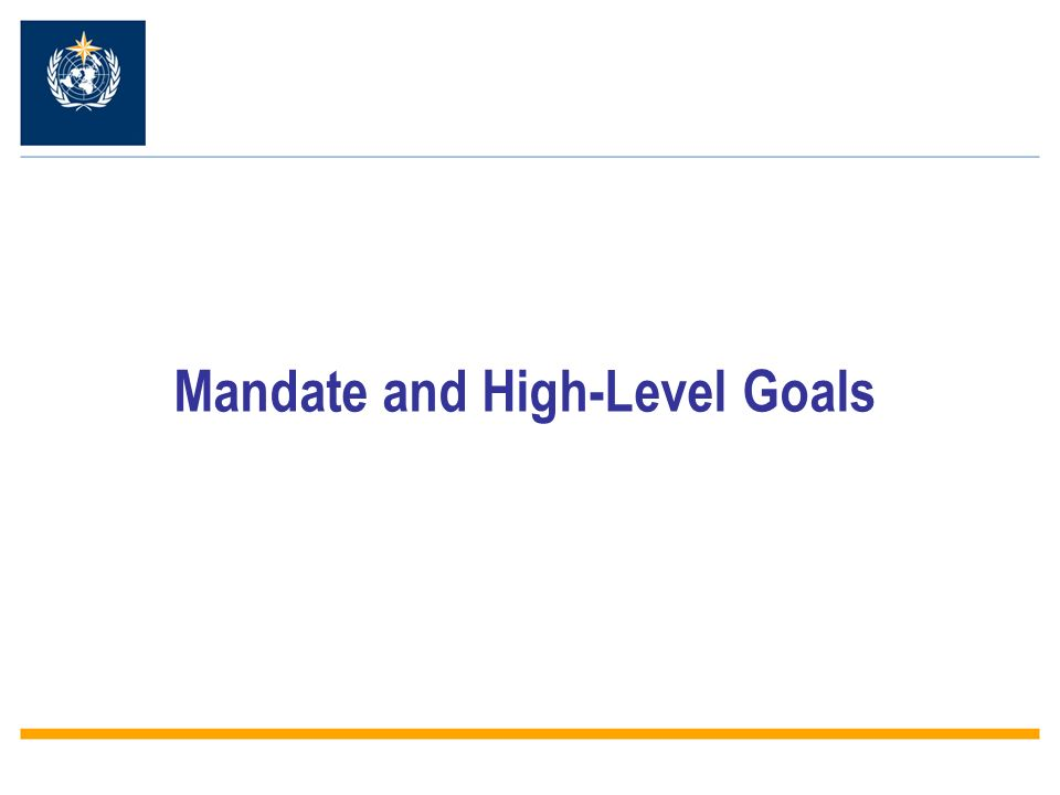 Mandate and High-Level Goals