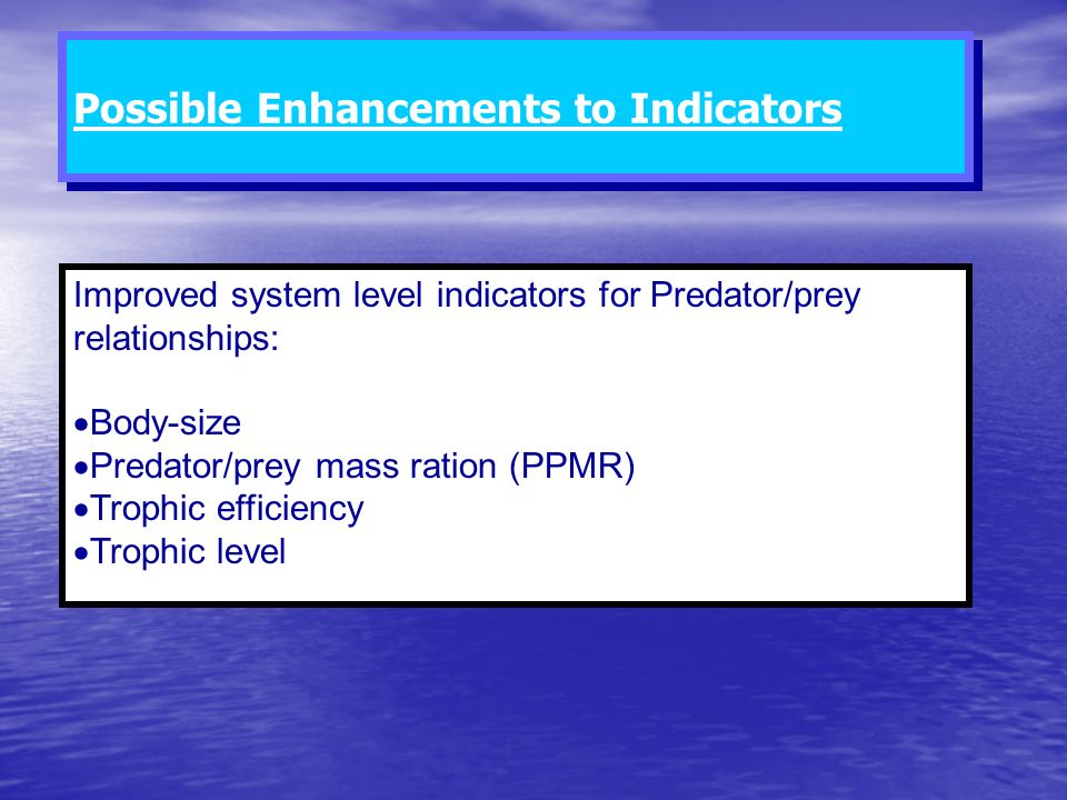 Improved system level indicators for Predator/prey relationships: Body-size Predator/prey mass ration (PPMR) Trophic efficiency Trophic level Possible
