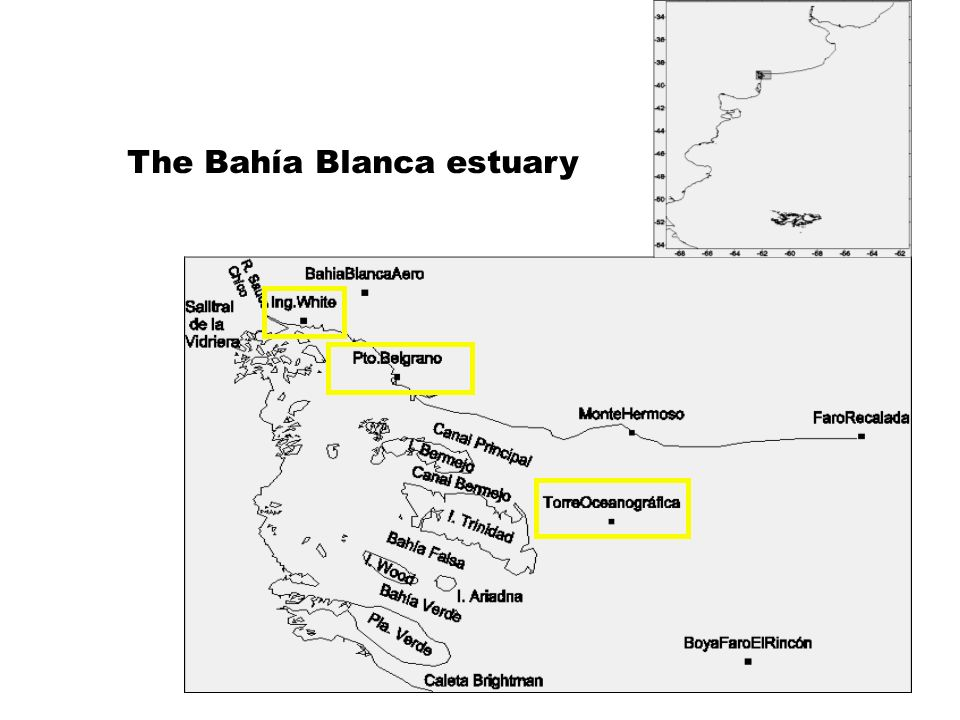 The Bahía Blanca estuary