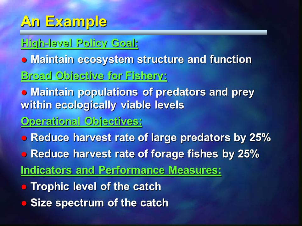 An Example High-level Policy Goal: Maintain ecosystem structure and function Maintain ecosystem structure and function Broad Objective for Fishery: Ma